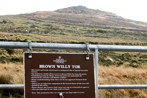 Brown Willy Tor