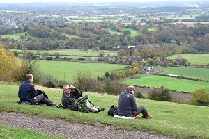 Picnic on Box Hill